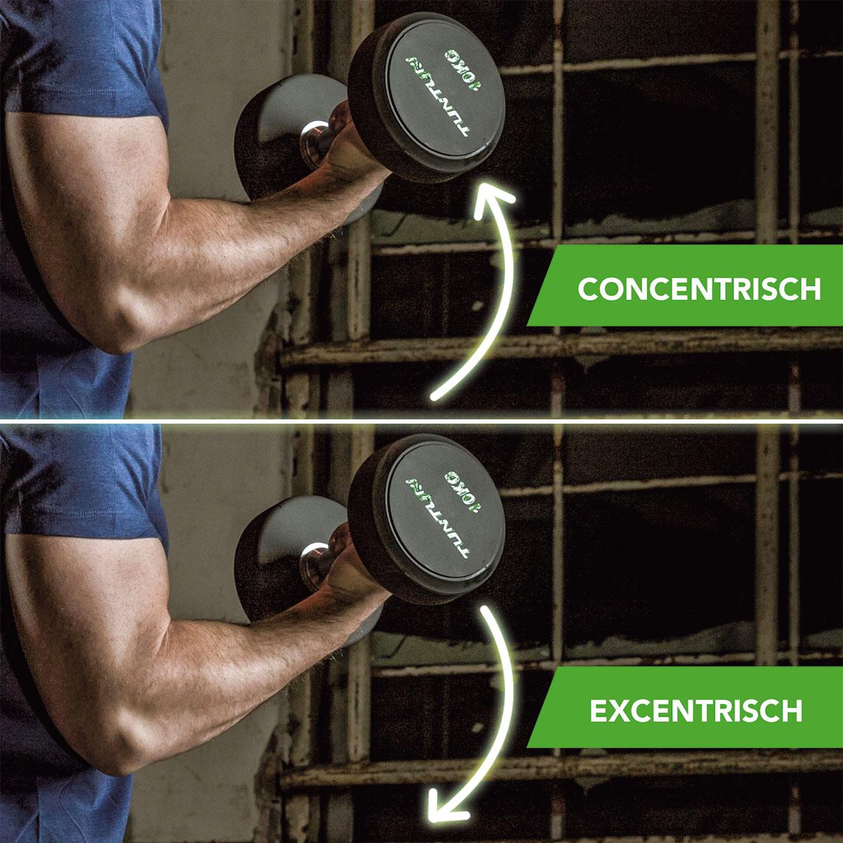 <h3><strong>Concentrisch en excentrisch</strong></h3>